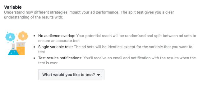 Facebook Split Tests Variables