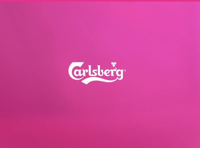 Carlsberg - Project Case Study