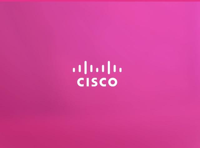 Cisqo - Creatives Case Study