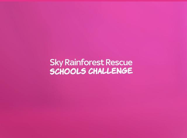 Sky Rainforest Rescue Schools Challenge - Project Case Study