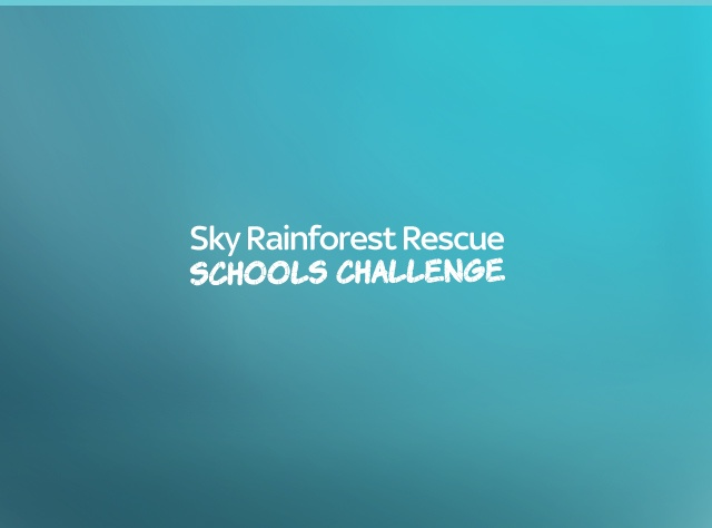 Sky Rainforest Challenge - Drupal 8 Project Case Study