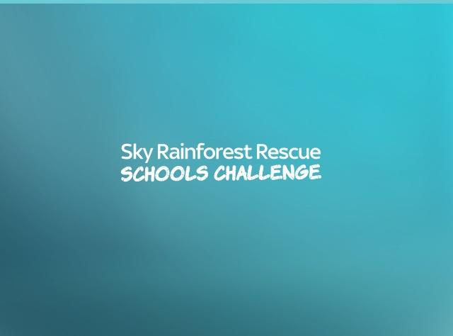 Sky Rainforest Challenge - Drupal 8 Project Case Study