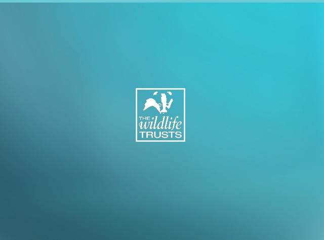 Wildlife Trusts - Drupal Project Case Study