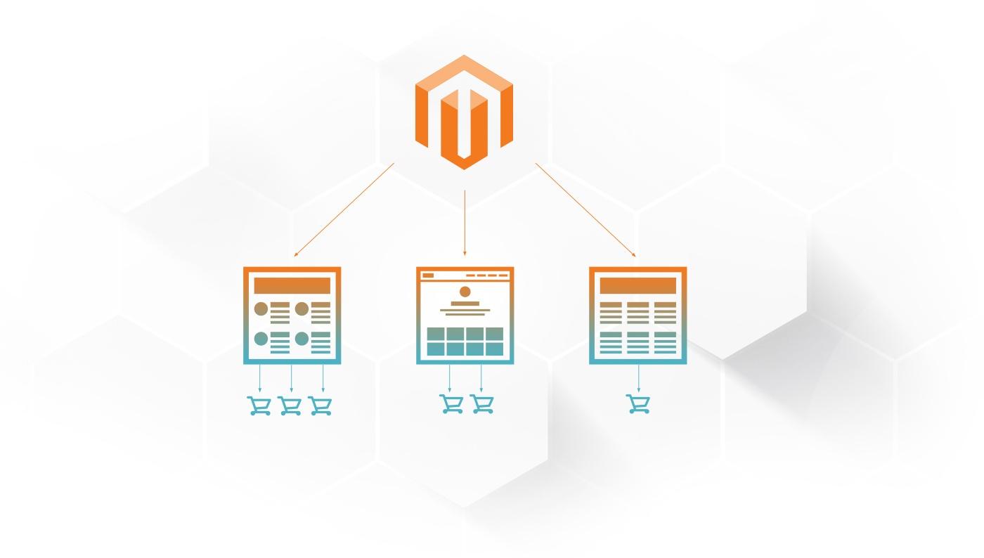 developing-multiple-webs.jpg