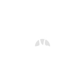 CTI_Malibu_(640x474px)_Logo