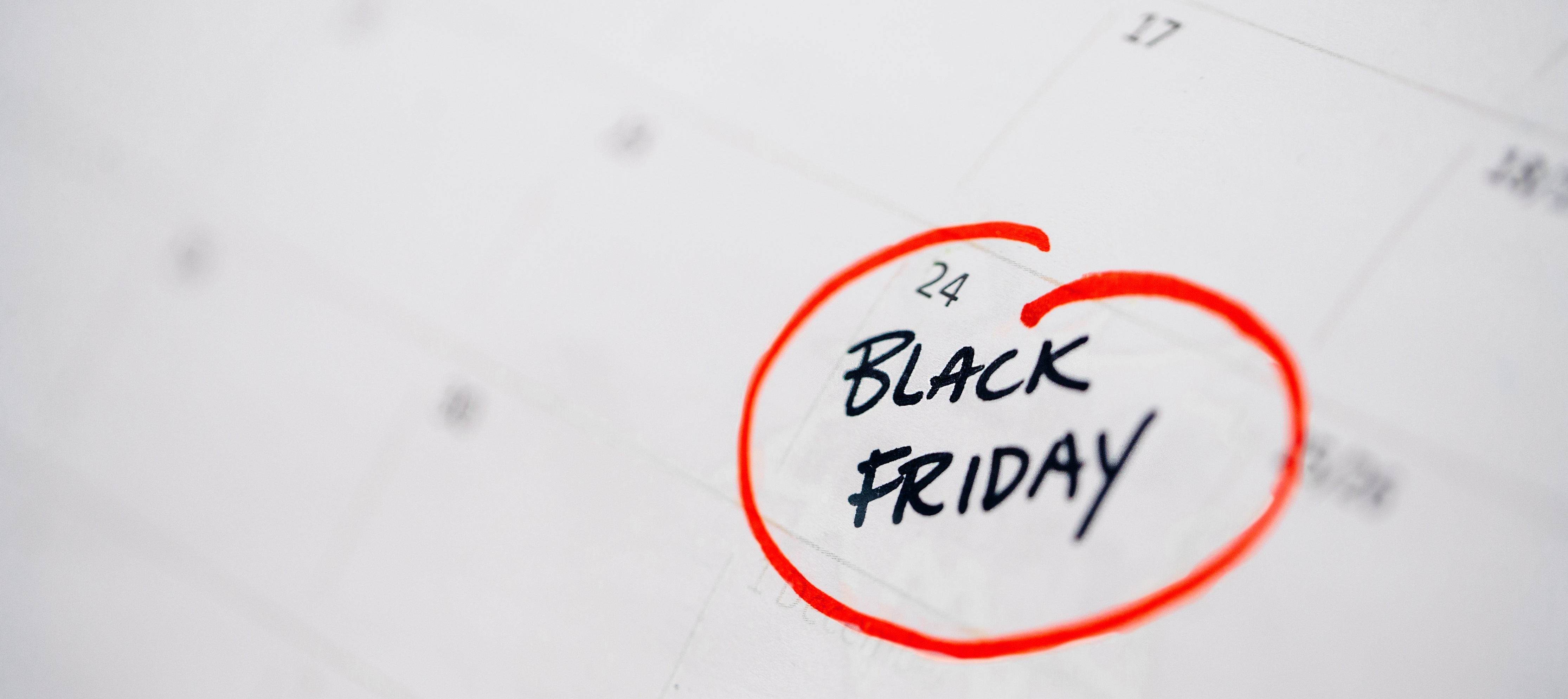Black Friday: How to Avoid eCommerce Crashes