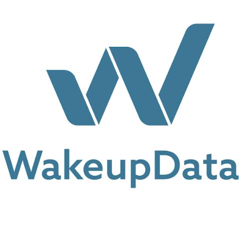 Ben Culpin - Wakeupdata
